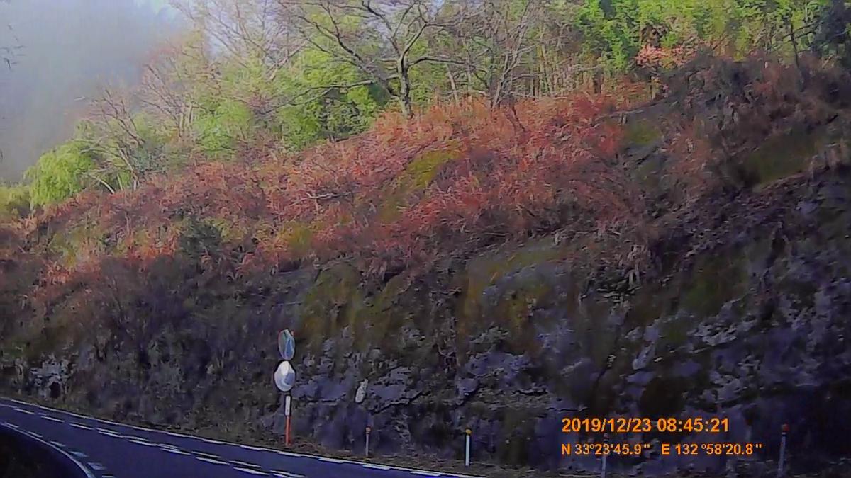 f:id:japan_route:20200113164324j:plain