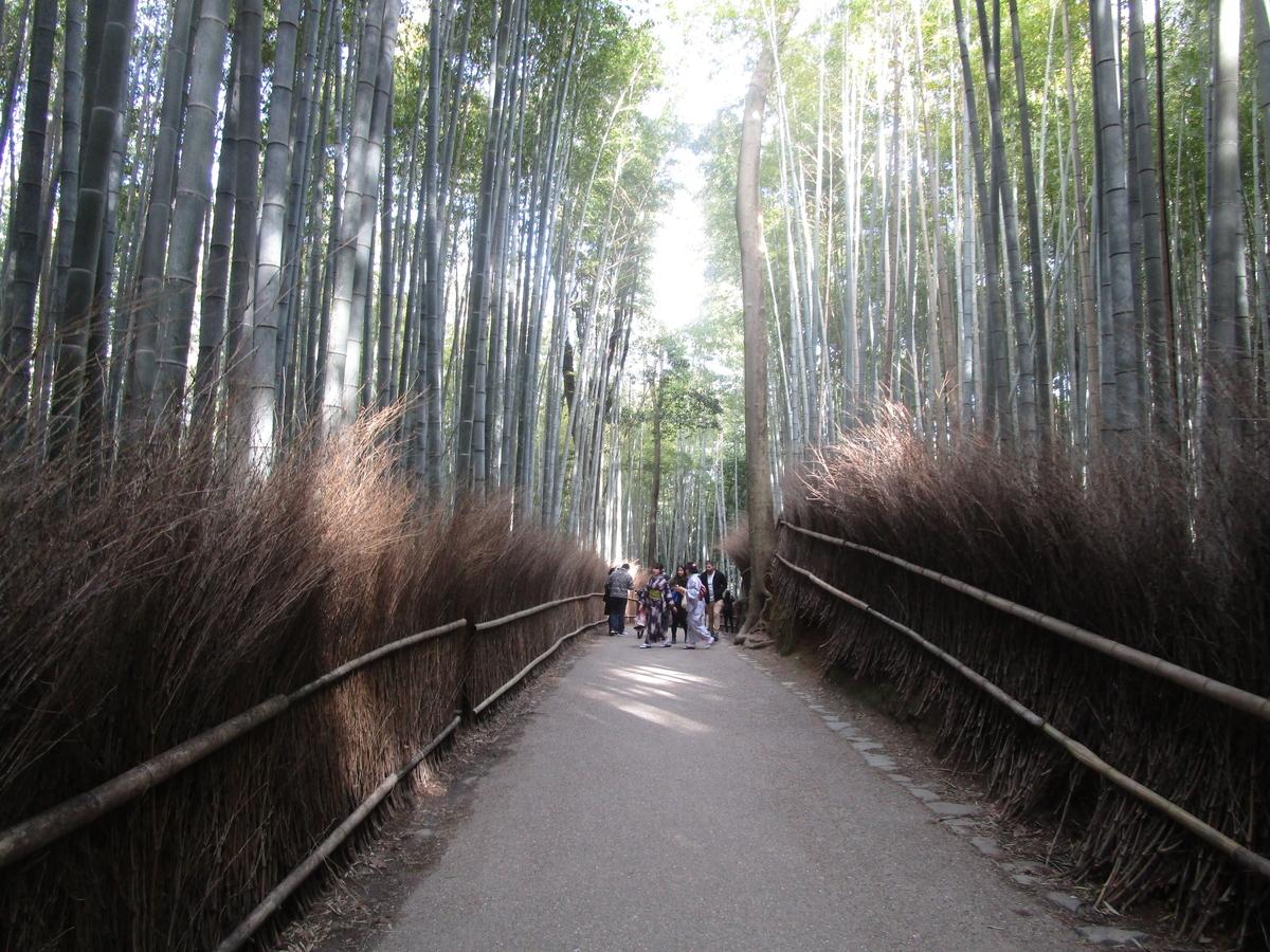 f:id:japan_route:20200221142455j:plain