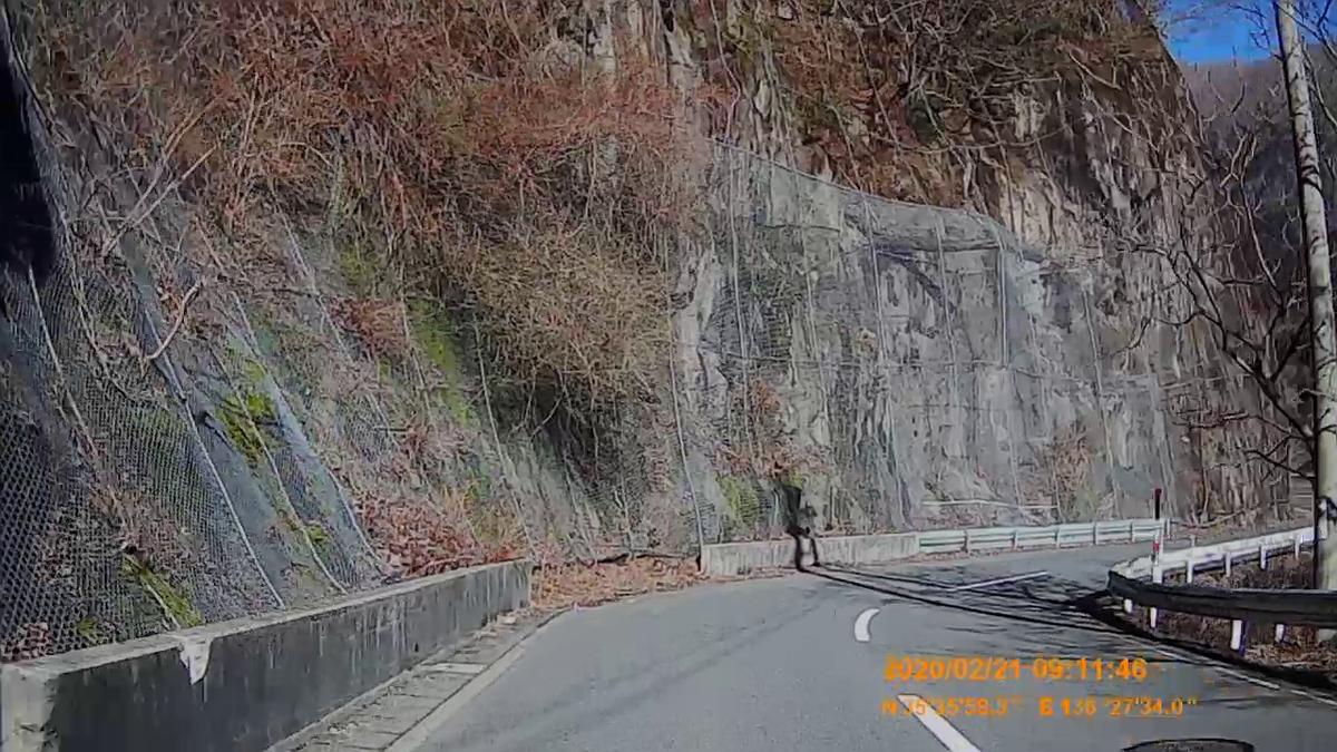 f:id:japan_route:20200328174933j:plain