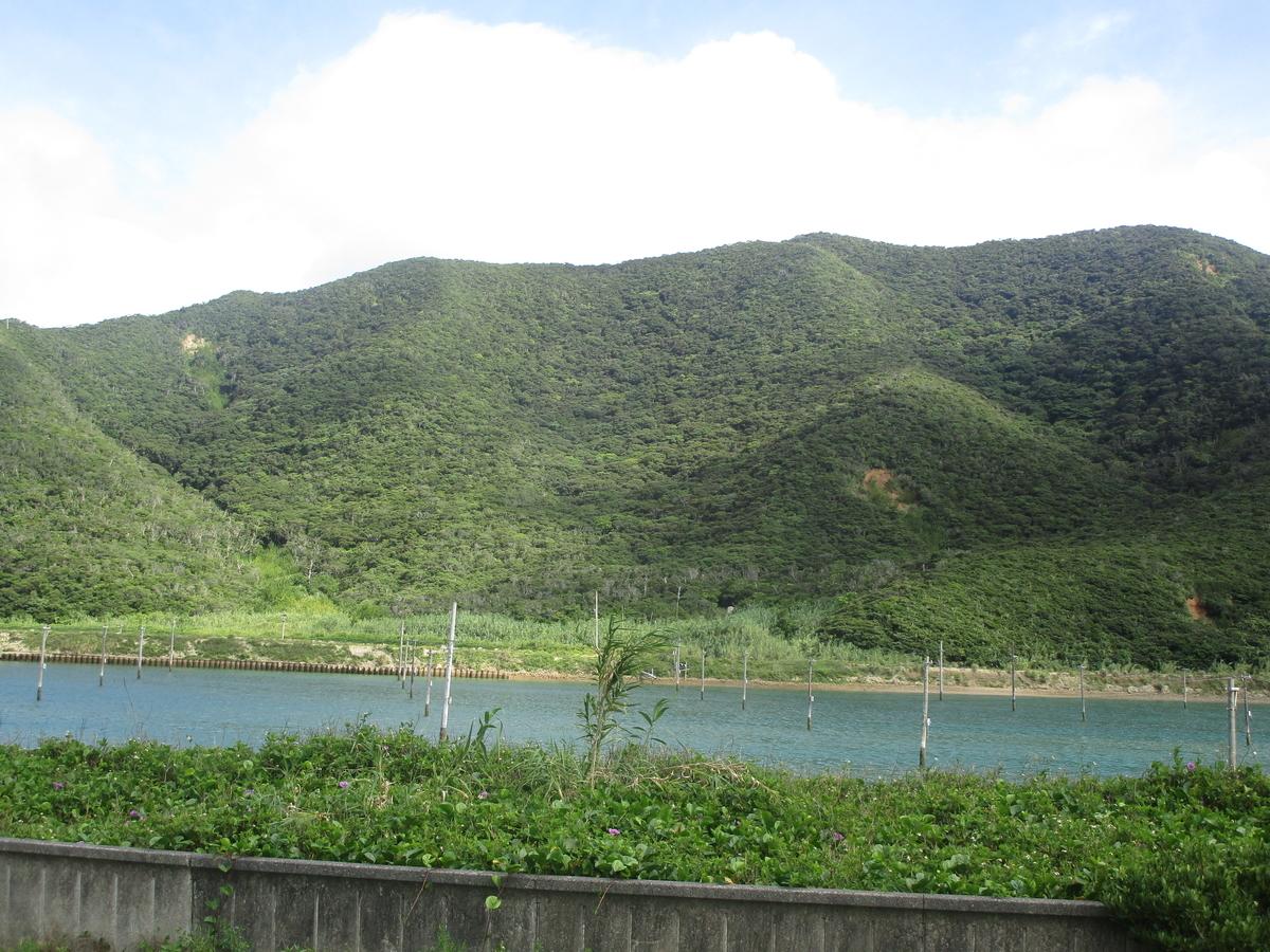 f:id:japan_route:20200615085856j:plain