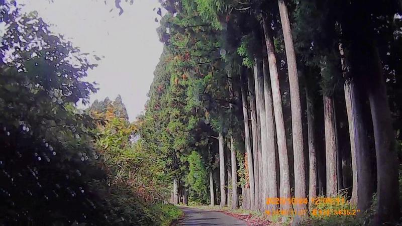 f:id:japan_route:20210113211105j:plain