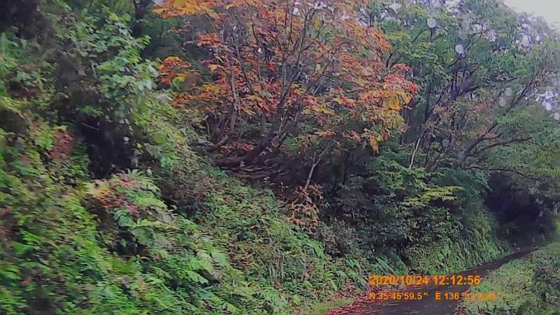 f:id:japan_route:20210113211403j:plain