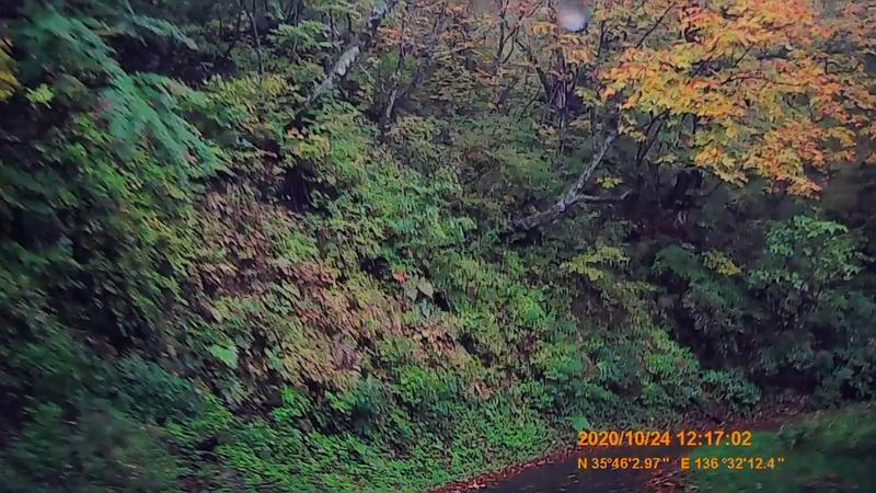 f:id:japan_route:20210113211446j:plain