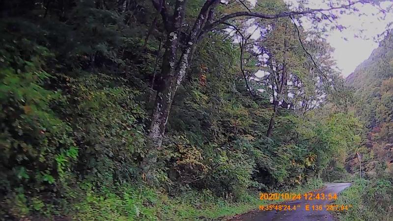 f:id:japan_route:20210113212014j:plain