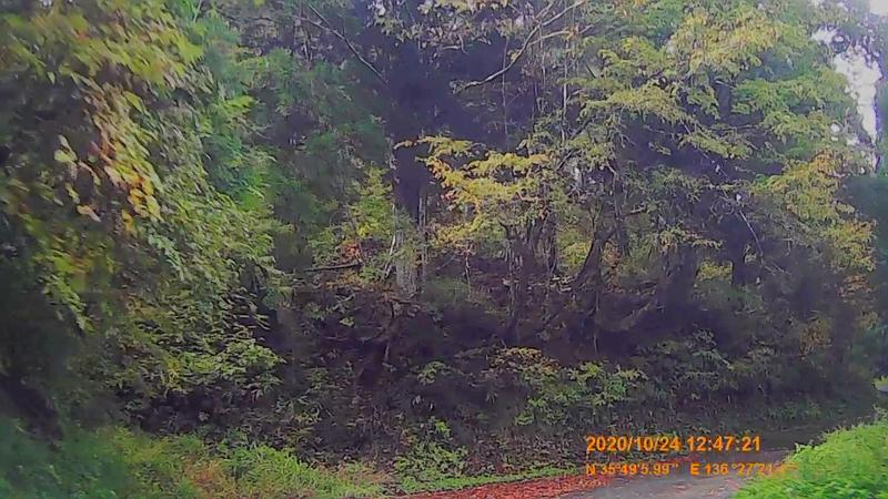 f:id:japan_route:20210113212122j:plain
