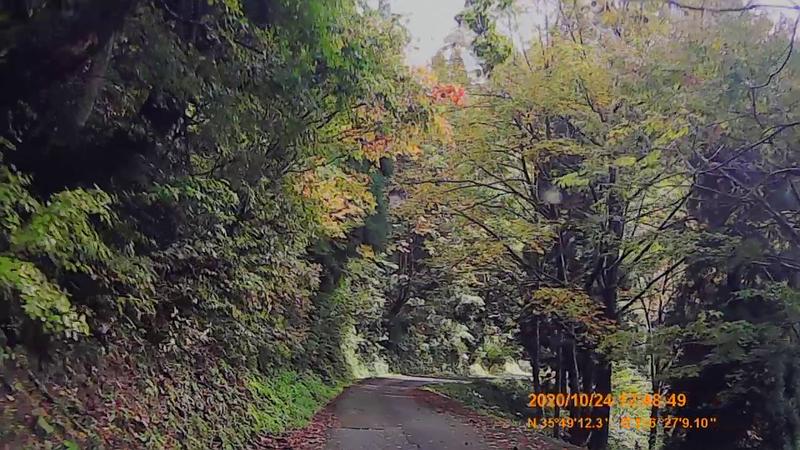 f:id:japan_route:20210113212156j:plain