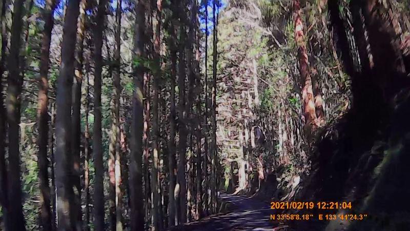 f:id:japan_route:20210606224503j:plain