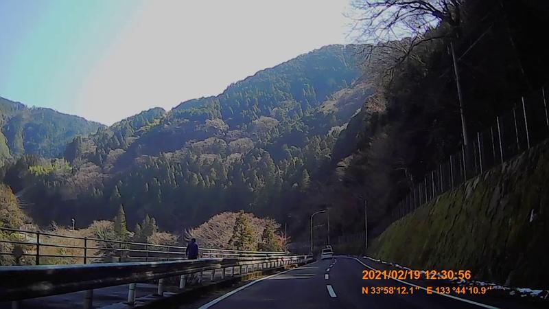 f:id:japan_route:20210606224739j:plain