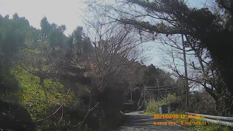 f:id:japan_route:20210623204151j:plain