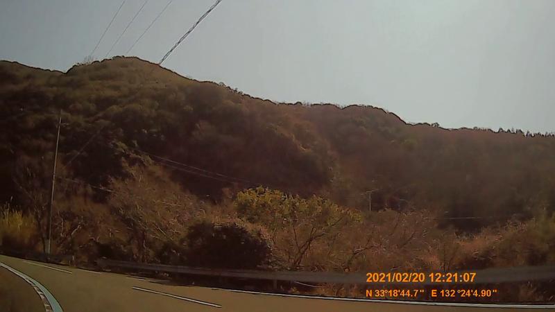 f:id:japan_route:20210623204223j:plain