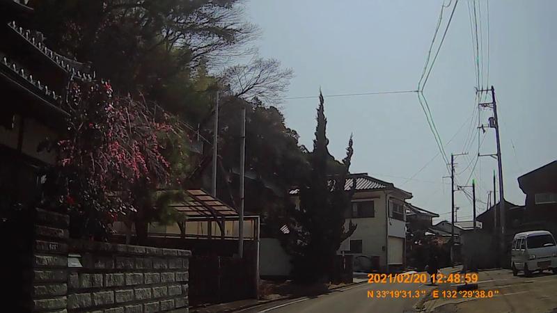 f:id:japan_route:20210623205452j:plain