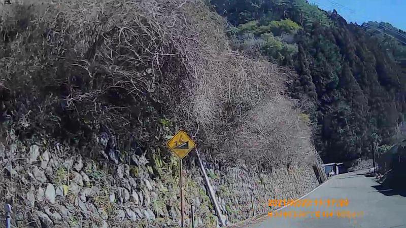 f:id:japan_route:20210704154429j:plain