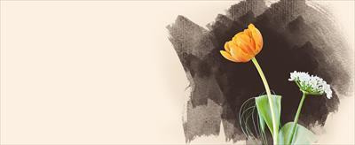 江原啓之さんの言葉!負の思いについてのお話:eharahiroyukikuchikomi.hatenablog.com: