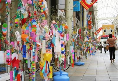 2016年七夕!笹の葉が良い理由と願い事はどんな願いごとをするのが良いの?:chiefukuro.com: