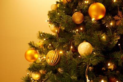 ヨーロッパのクリスマスといえばシュトーレン!クリスマスの準備を始めませんか?