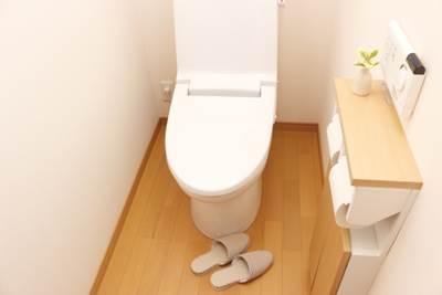トイレで本を読んだりメールを送ったりするのはNGな理由、知ってますか?