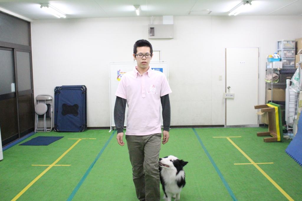 f:id:japandogacademy:20170127204433j:plain