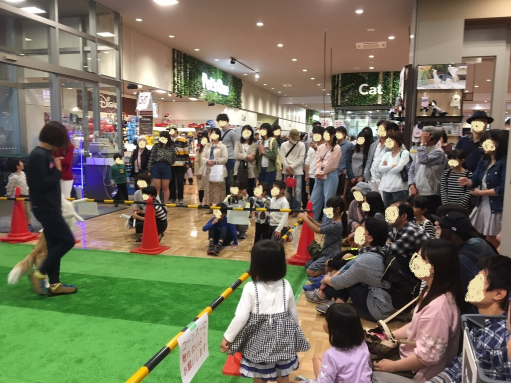 f:id:japandogacademy:20170501000455j:plain