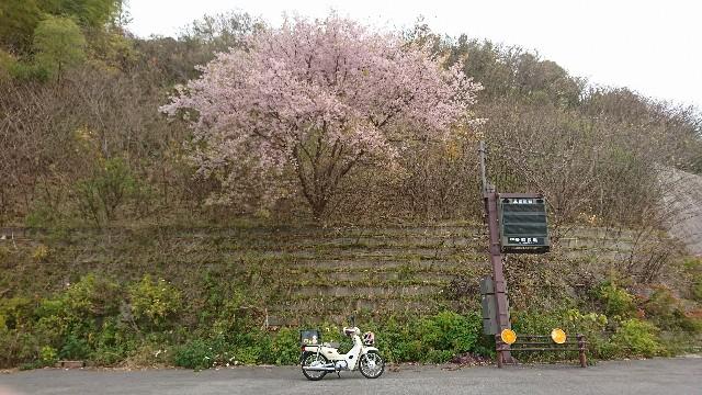 f:id:japandrive:20171224100307j:image
