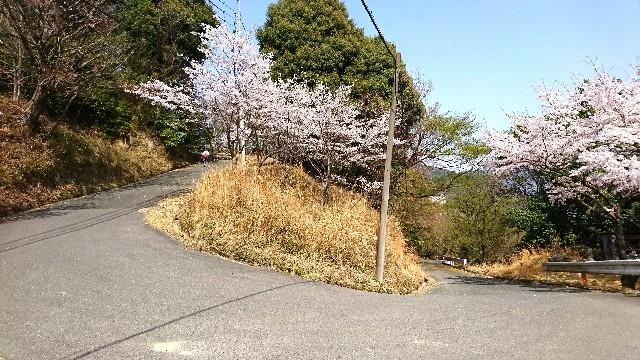 f:id:japandrive:20180401202906j:image