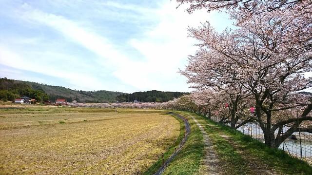 f:id:japandrive:20190421074121j:image