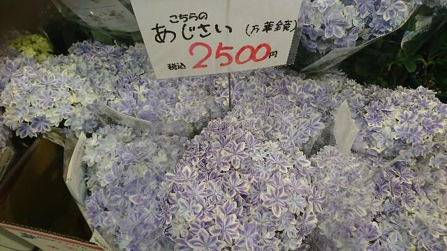 f:id:japandrive:20190505193721j:image