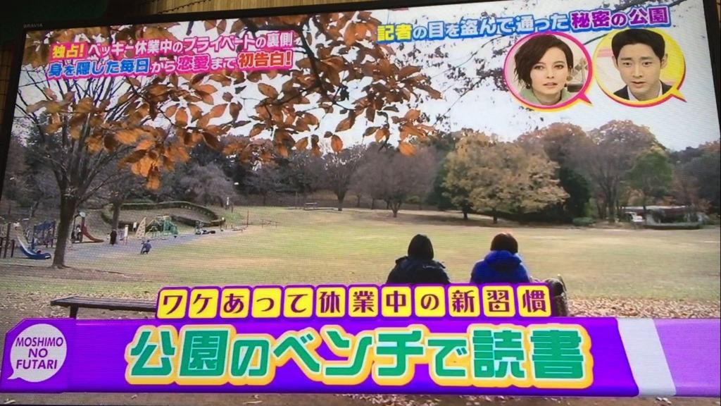 f:id:japanese-standard0:20170111232456j:plain