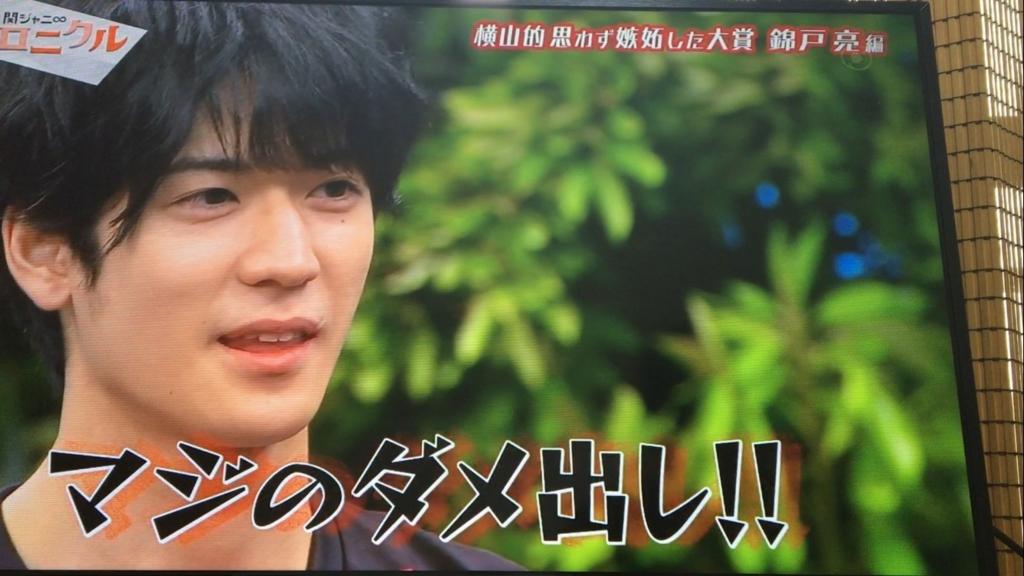 f:id:japanese-standard0:20170114141715j:plain