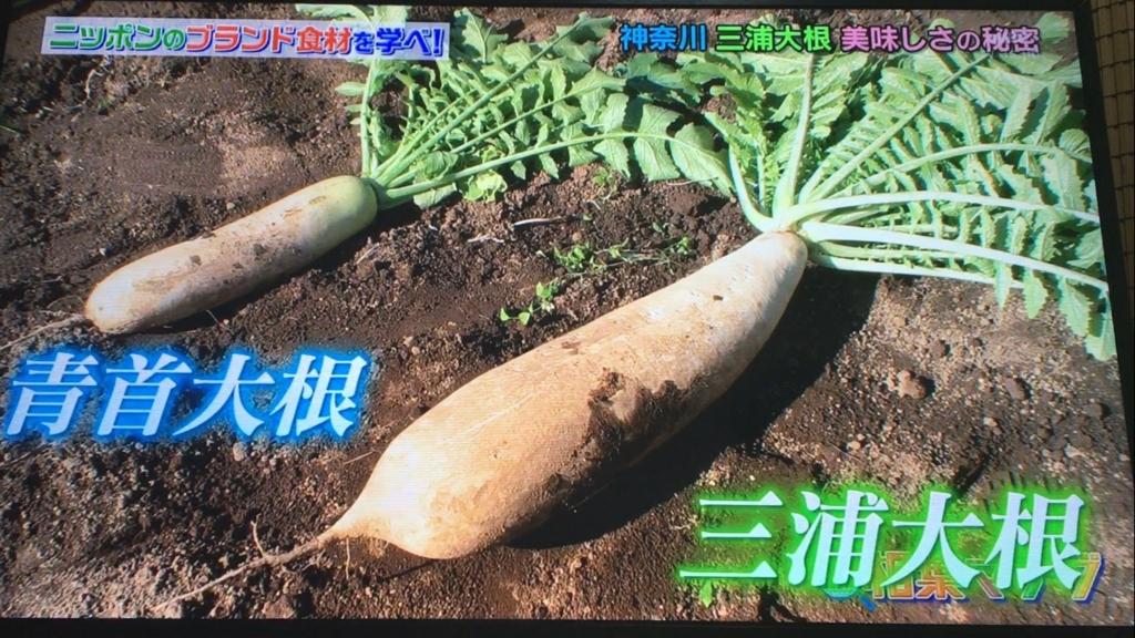 f:id:japanese-standard0:20170115184247j:plain