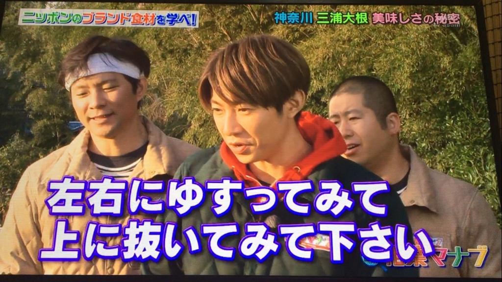f:id:japanese-standard0:20170115184313j:plain