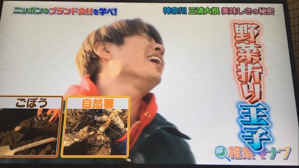 f:id:japanese-standard0:20170115184358j:plain