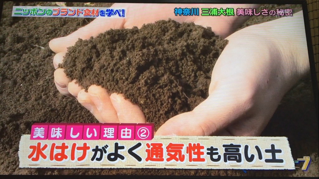 f:id:japanese-standard0:20170115184448j:plain