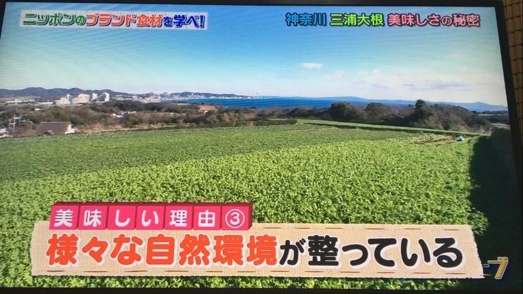 f:id:japanese-standard0:20170115184501j:plain