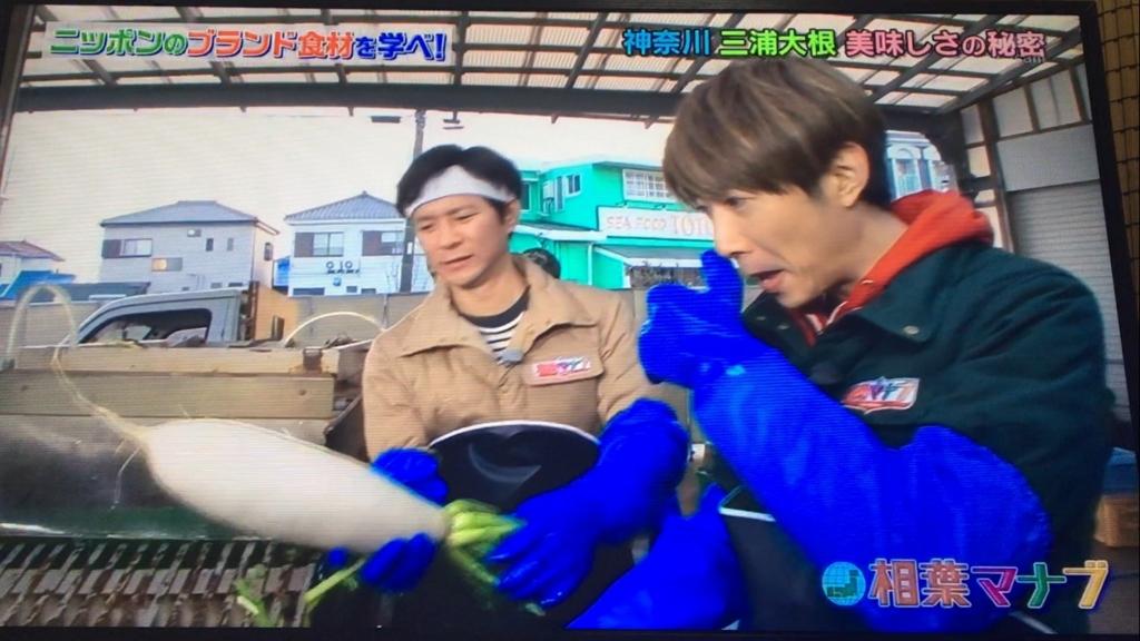 f:id:japanese-standard0:20170115184523j:plain
