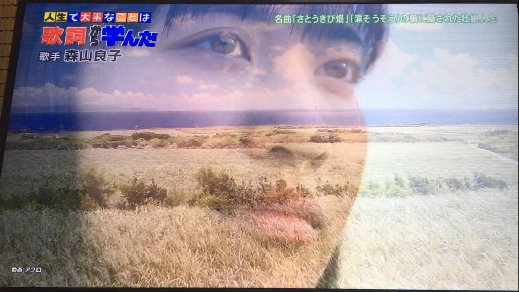 f:id:japanese-standard0:20170115213313j:plain