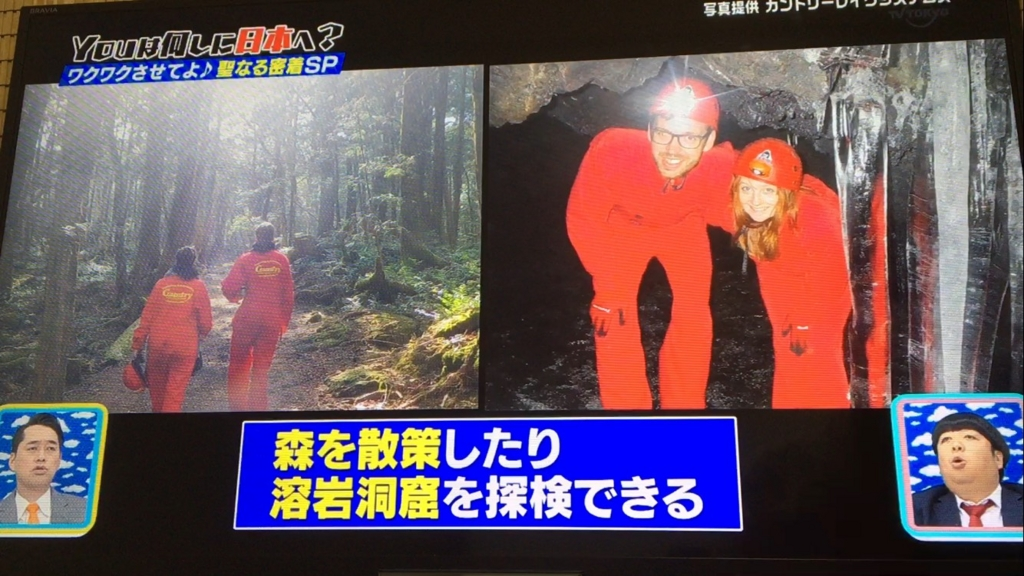 f:id:japanese-standard0:20170116202232j:plain