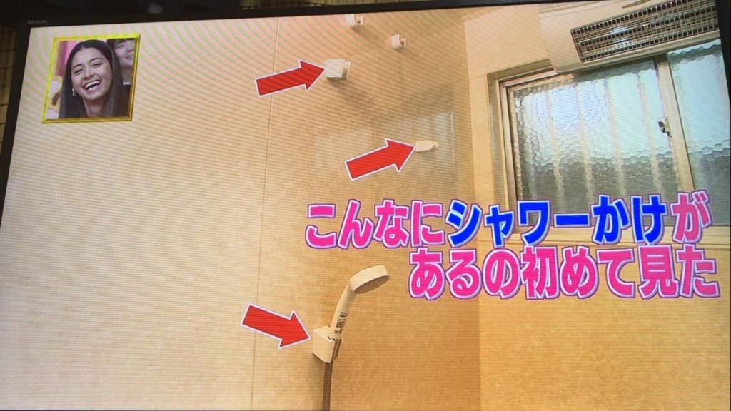 f:id:japanese-standard0:20170117230454j:plain