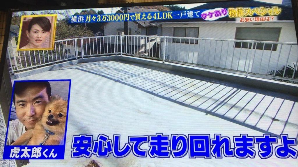 f:id:japanese-standard0:20170117230755j:plain