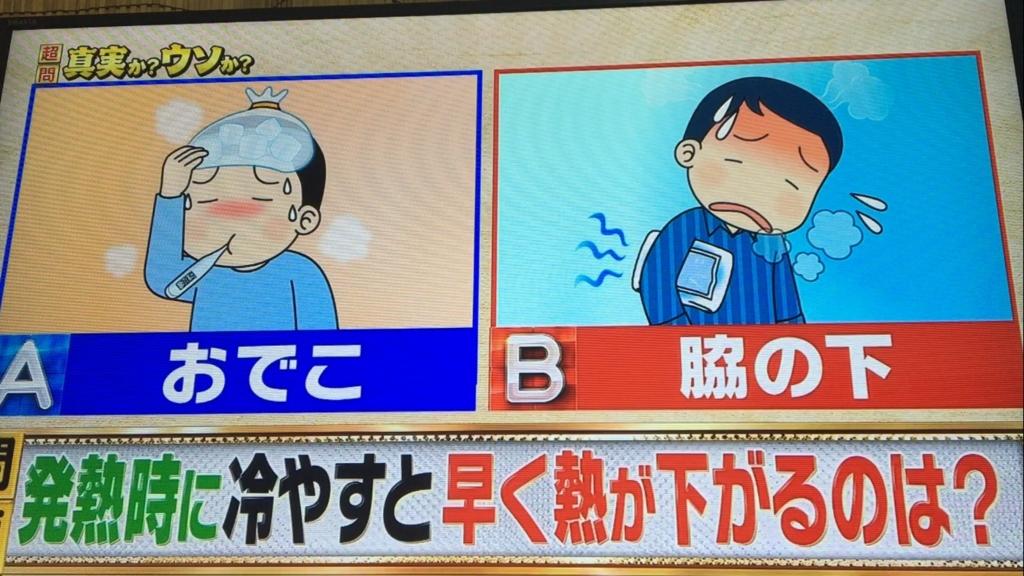 f:id:japanese-standard0:20170120211141j:plain