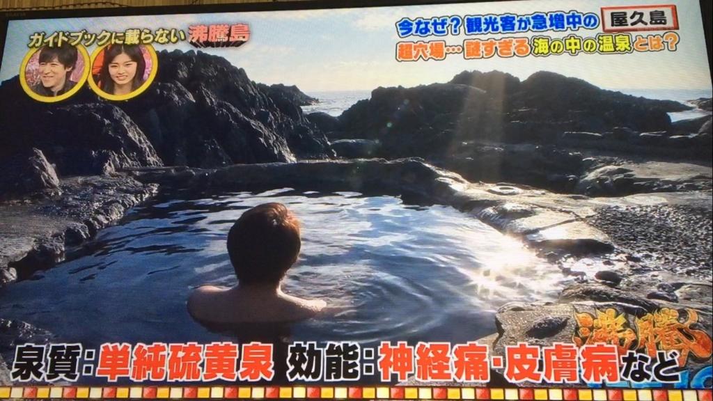 f:id:japanese-standard0:20170120213547j:plain