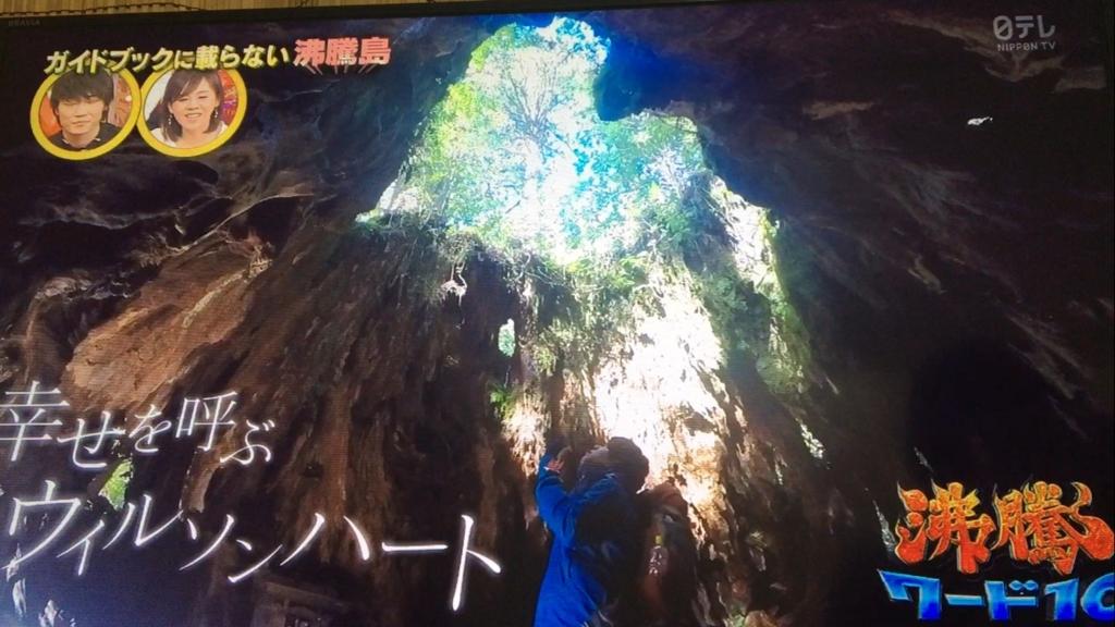 f:id:japanese-standard0:20170120213700j:plain