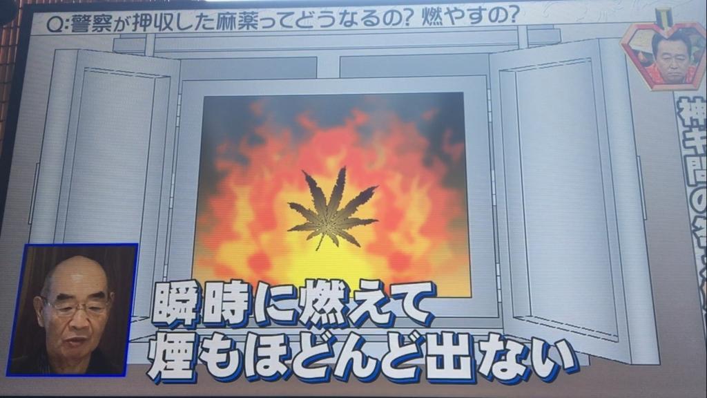 f:id:japanese-standard0:20170122135442j:plain