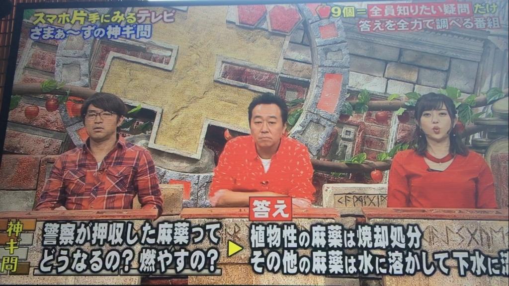 f:id:japanese-standard0:20170122135559j:plain