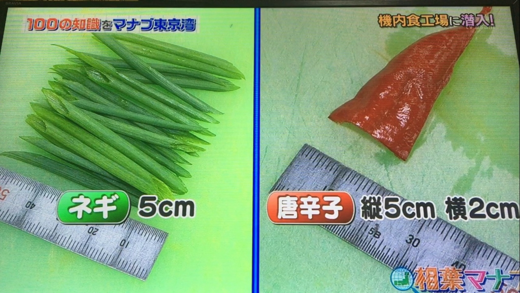 f:id:japanese-standard0:20170122184638j:plain