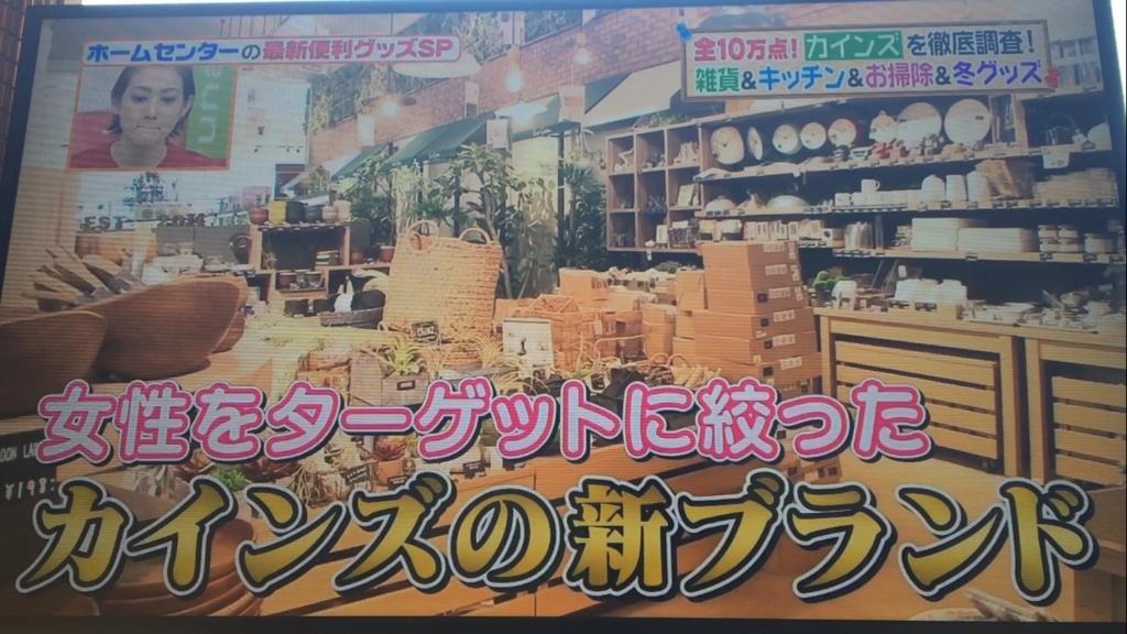 f:id:japanese-standard0:20170124130331j:plain
