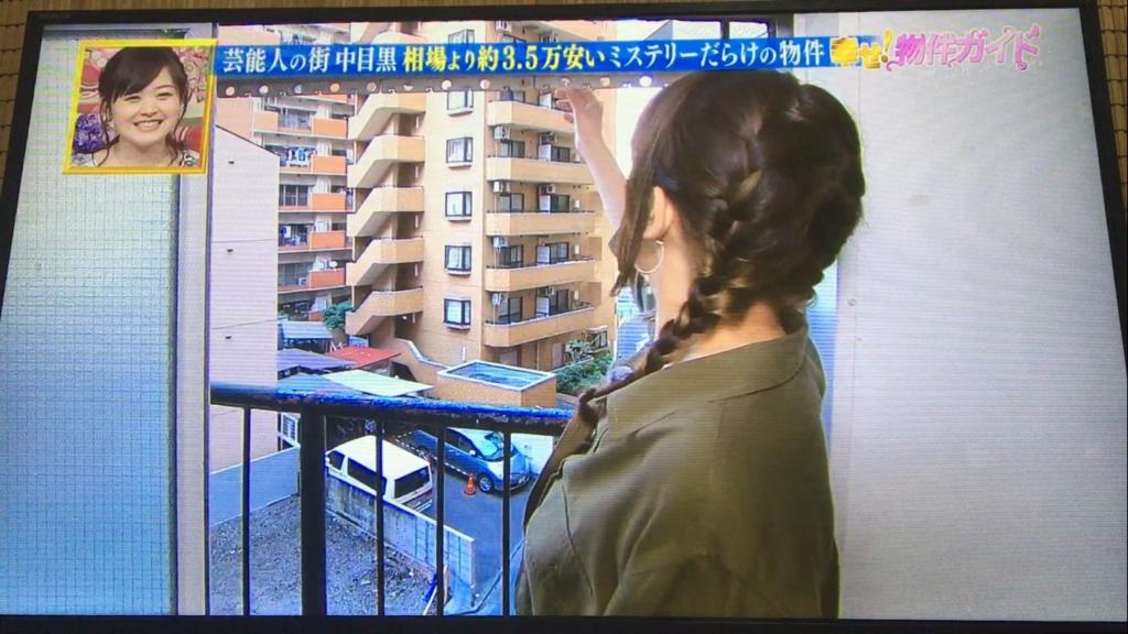 f:id:japanese-standard0:20170124232244j:plain