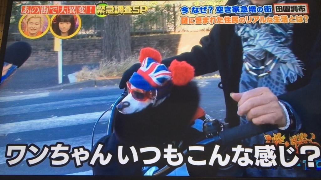 f:id:japanese-standard0:20170127212309j:plain