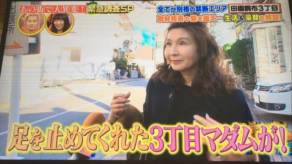 f:id:japanese-standard0:20170127212451j:plain