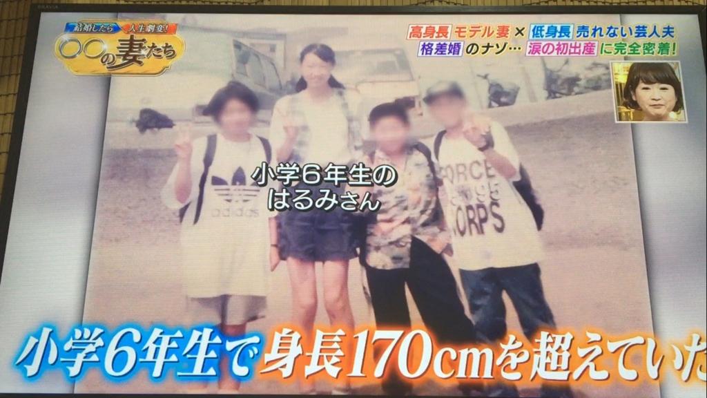 f:id:japanese-standard0:20170130202500j:plain