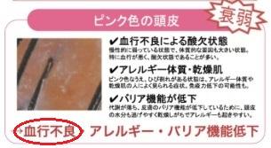 f:id:japanese-standard0:20170212211126j:plain